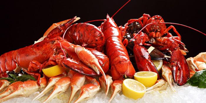 Boston Lobster, MoMo Café (Courtyard Hong Kong Sha Tin), Sha Tin, Hong Kong