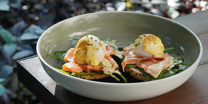 Salmon Bagel Eggs Benny from Bee