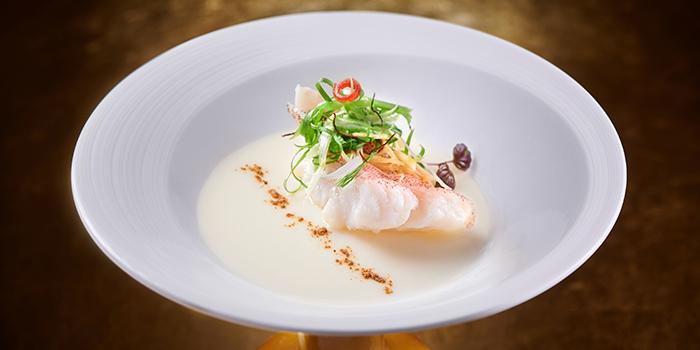 Steamed Egg White with Garoupa Filet, Wing Lei, Wynn Macau, Macau