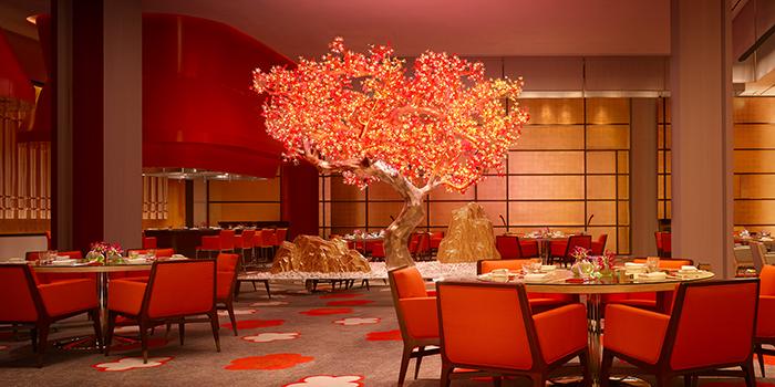 Main Dining, Mizumi, Wynn Palace, Macau