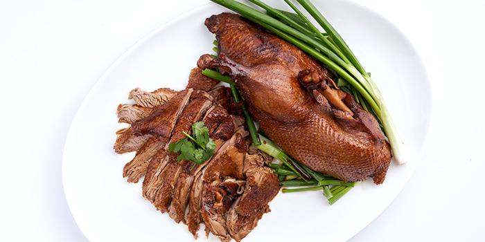 Teo Chew Style Braised Duck from Peach Garden (OCBC Centre) at OCBC Centre in Raffles Place, Singapore