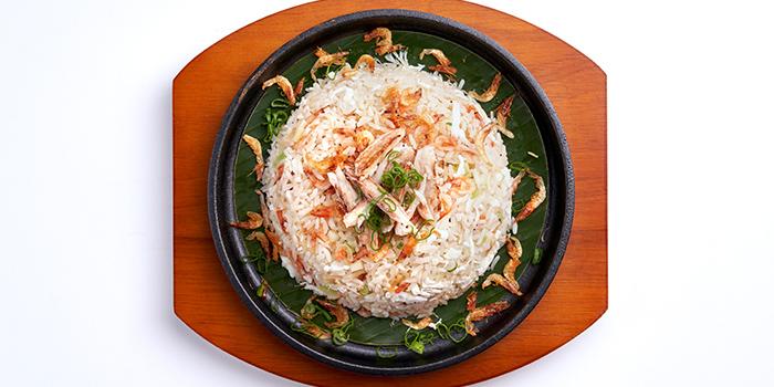 Fried Rice with Sakaru Prawn from Peach Garden (The Metropolis) at The Metropolis Tower in Buona Vista, Singapore