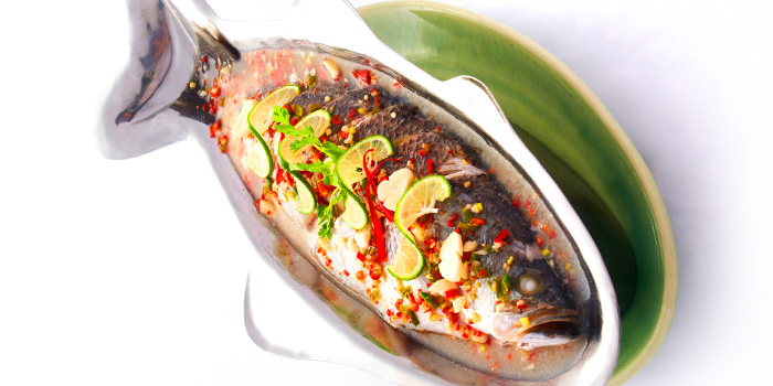 Steamed Seabass with Lime, Garlic and Chili Sauce  from Thai Accent at VivoCity in Habourfront, Singapore