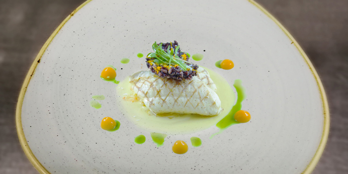 4-Turbot from Savelberg on Wireless Road, Bangkok