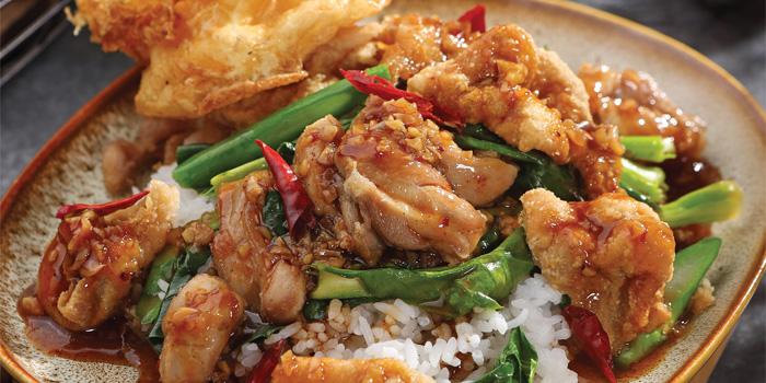 Spicy Kailan Chicken on Rice Singlet at Noble by Zab Thai, Gunawarman