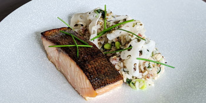 Miso Roasted Salmon from Clan Cafe at Outram, Singapore