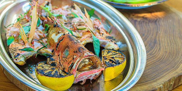 Food at Ona Canggu