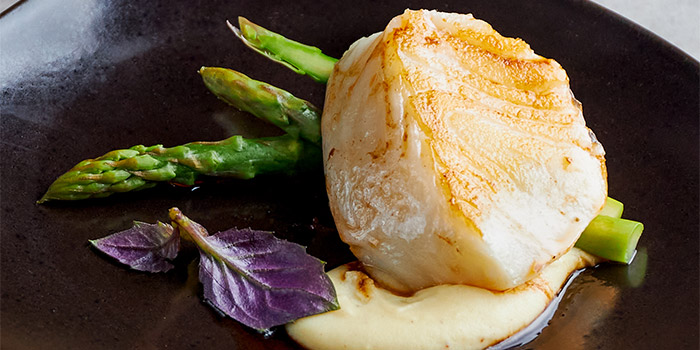 Pan roasted French Silver Cod from Table At 7 at SIM Management House in Bukit Timah, Singapore