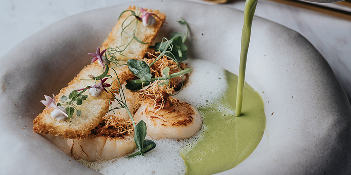 Seared Scallops from Hathaway Restaurant in Dempsey, Singapore