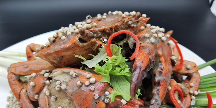 White Pepper Crab from House of Seafood (Clarke Quay) in Clarke Quay, Singapore