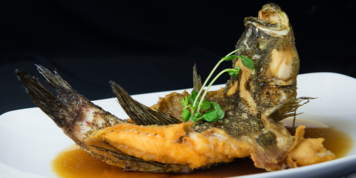 Crispy Fish Drizzled with Special Sauce from House of Seafood (Clarke Quay) in Clarke Quay, Singapore