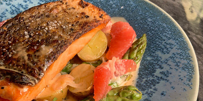 Pan Fried Salmon in Citrus from The Gallery Bistro  at National Gallery Singapore in City Hall, Singapore