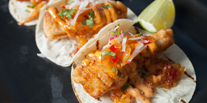 Snapper Fish Tacos from Dallas Restaurant & Bar (Boat Quay) in Boat Quay, Singapore