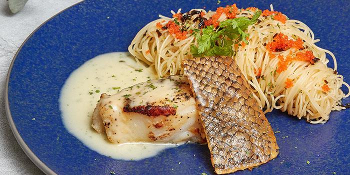 Grilled Miso Cod Capellini from Cicada Singapore in Clarke Quay, Singapore