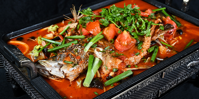 Tomato Grilled Fish from 6ix 6ix 六六 in Orchard, Singapore
