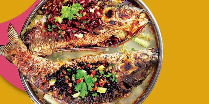 Dual Flavour Fish from Chong Qing Grilled Fish (Bugis) in Bugis, Singapore