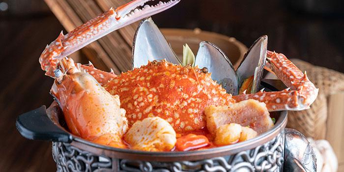 Suka Thai